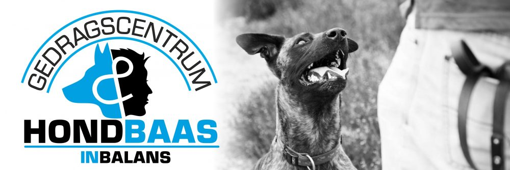 Gedragscentrum Hond Baas in Balans